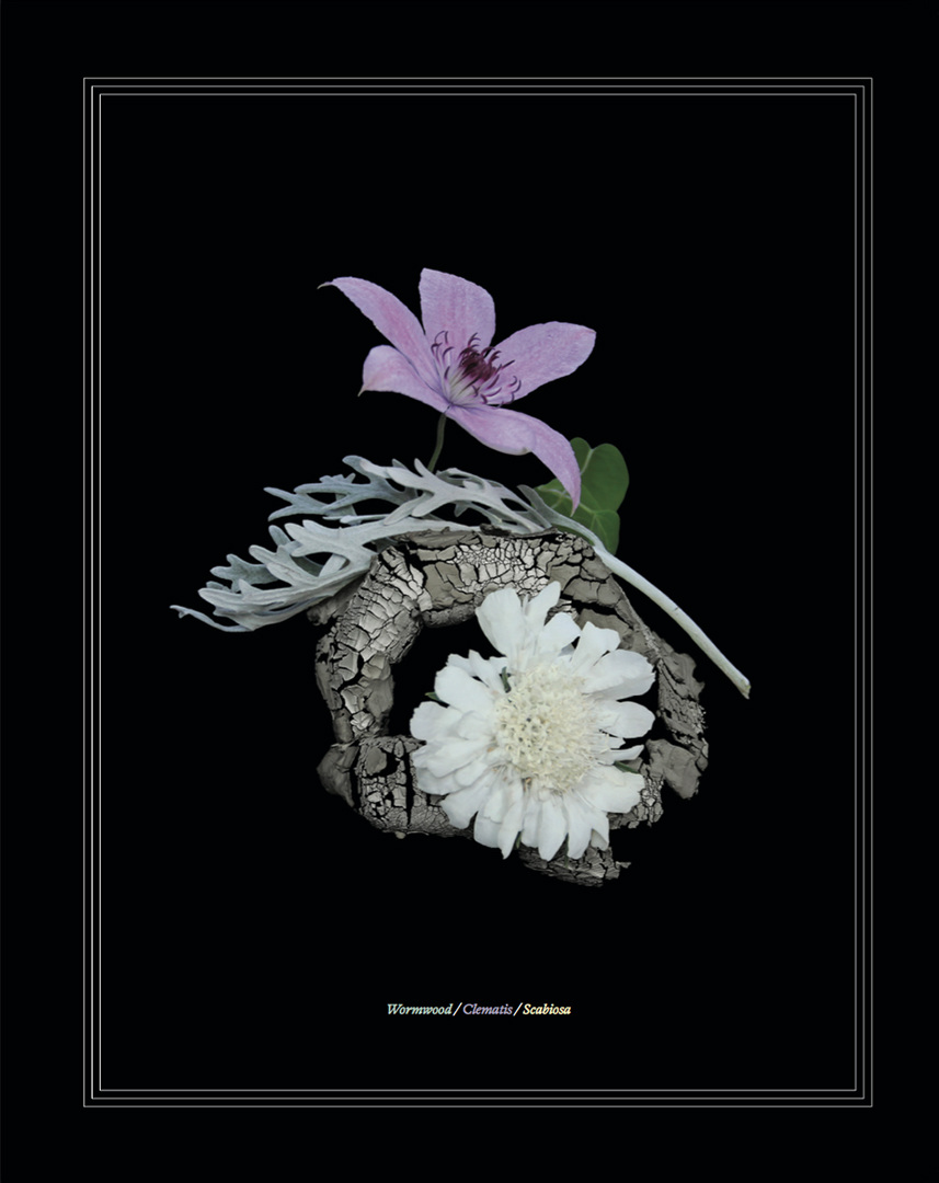 Floral dictionary karen azoulay floriography the language of flowers is a form of communication that was popular in victorian times botanical species were assigned sentimental meanings izmirmasajfo